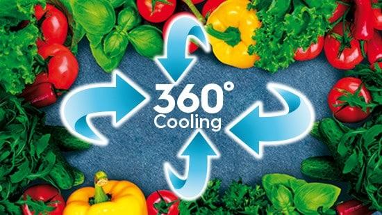 Nhiệt độ ổn định, thực phẩm tươi ngon hơn